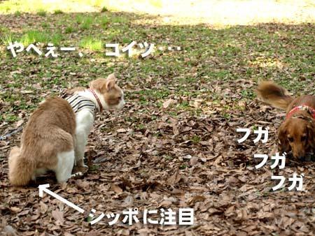 04 美人 あー、ヤベーコイツ.jpg
