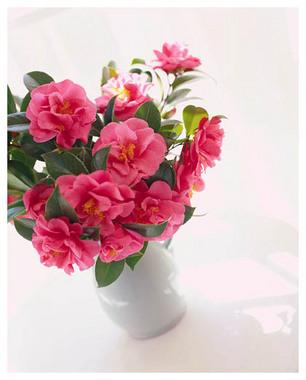 10花瓶.jpg