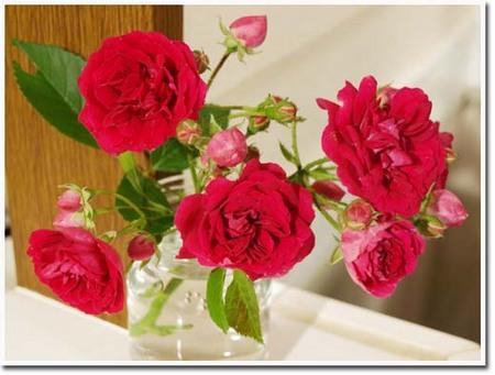10美人になる方法 バラ花瓶.jpg