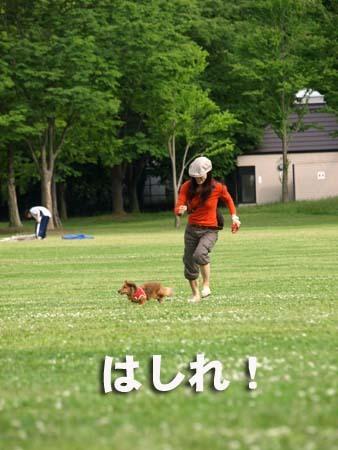 16 美人 はしれ!.jpg