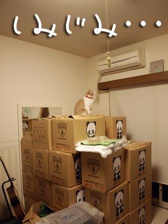 1 しみじみ・・・.jpg