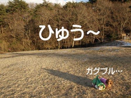 1 ひゅう〜.jpg