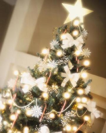 1クリスマスツリー.JPG