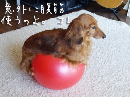 1ボールモモ.JPG