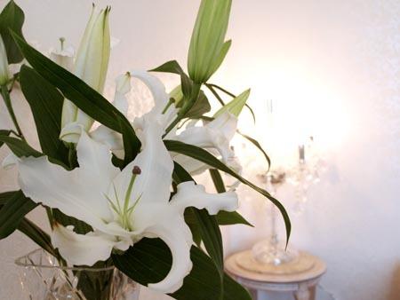 1対面 花と光.jpg