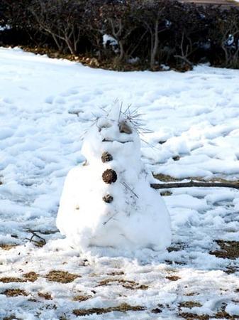 1散歩 雪だるま1.jpg