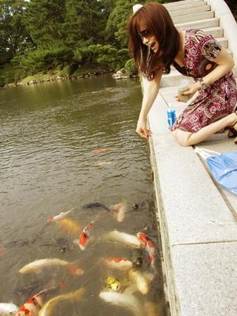 1縮景園 鯉にエサをやる.jpg