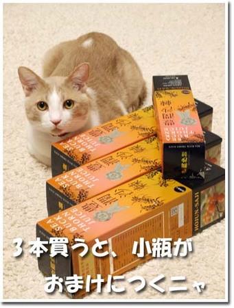 1黄酸汁サジー3本.jpg