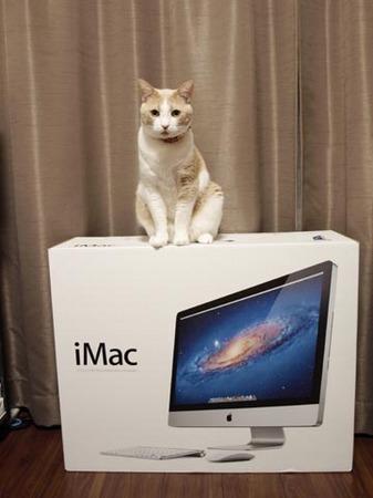 1Mac.jpg