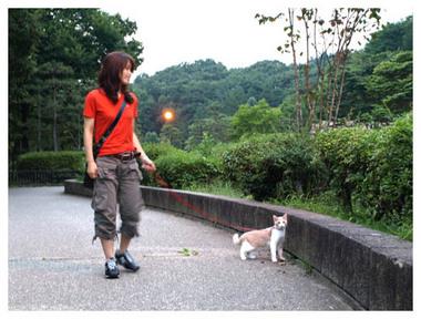 20ニャン散歩.jpg