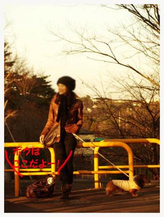21美人になる方法 夕方の散歩.jpg