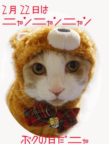 22美人になる方法 ニャンニャンニャン.jpg