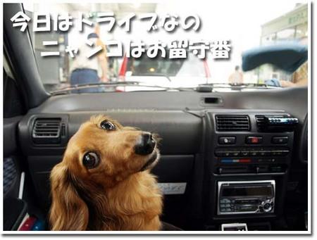 23美人になる方法 今日はドライブなの.jpg
