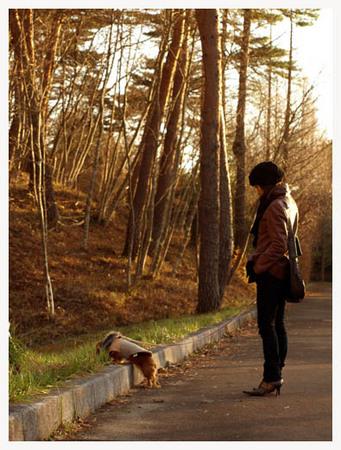 24美人になる方法 散歩はクオリティタイム.jpg