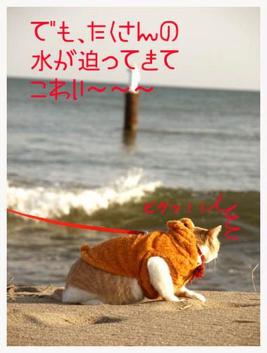 27美人になる方法 こわい〜.jpg