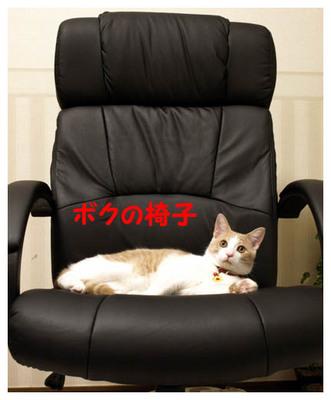 28ボクの椅子.jpg