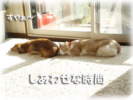 2 しあわせな時間.jpg