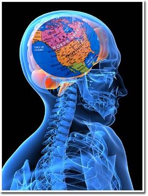 4美人になる方法 脳内地図.jpg