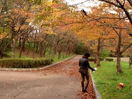 4 美人 季節はすっかり秋.jpg