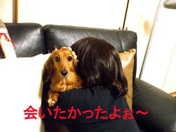 感動の再会.jpg