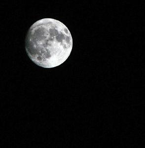 月光浴.jpg