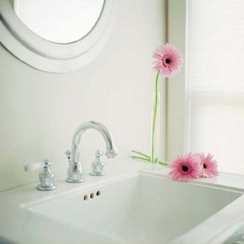 洗面所の鏡を磨く.jpg