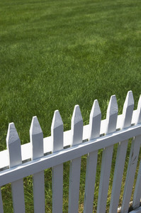隣の芝生.jpg