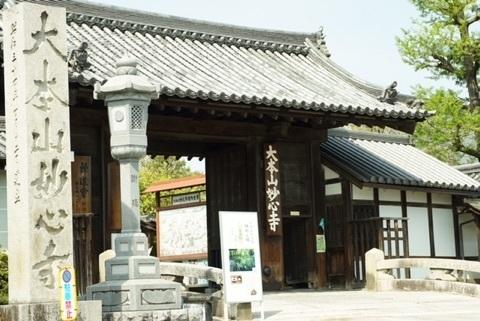 京都 妙心寺.jpg