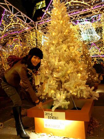 仙台から送られたツリー.jpg