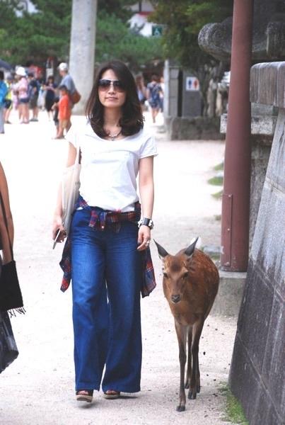 宮 鹿と散歩.jpg