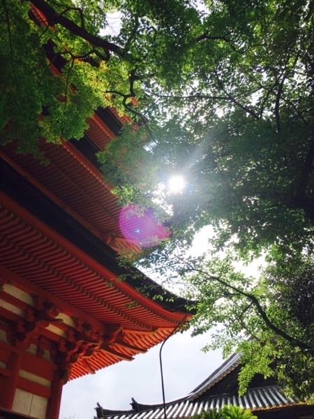 宮島 五重塔.jpg