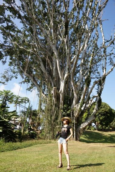 木の前のワタナベ.jpg