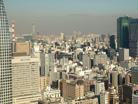 東京 眺めいい.jpg