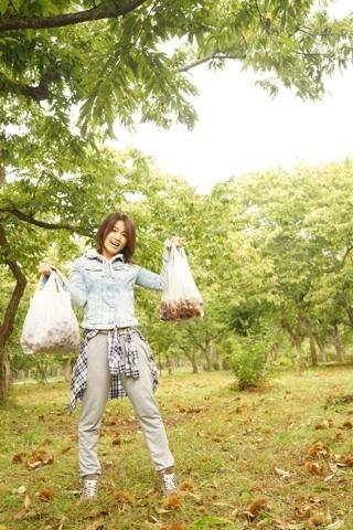 栗 ワタナベの収穫.jpg