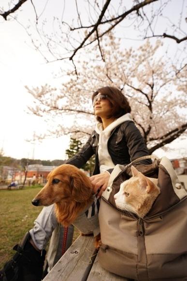 桜 ベンチで三人.jpg
