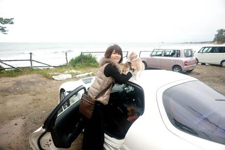 海 マイケル車の屋根.jpg