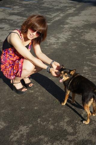 犬とワタナベ.jpg