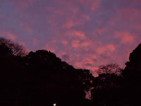 赤紫の空.jpg