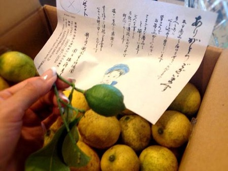 FB国産レモン.jpg